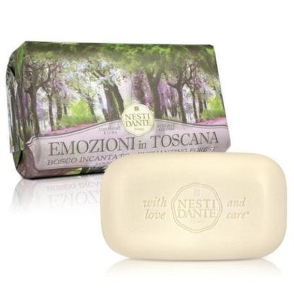 Nesti Dante Emozioni in Toscana Elbűvölő erdő